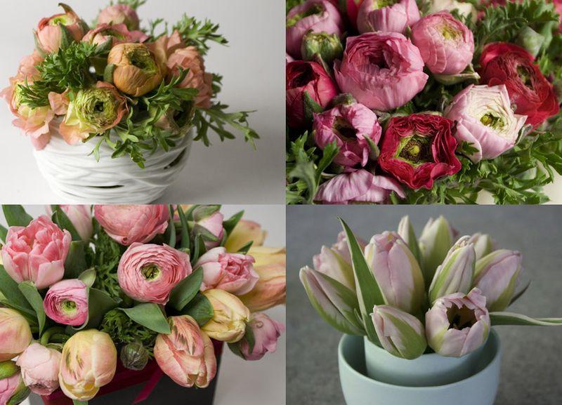 Roseandradishflowers